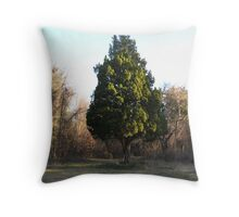 Life in the sleep of winter Throw Pillow
