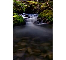 The Other Goat Creek Photographic Print
