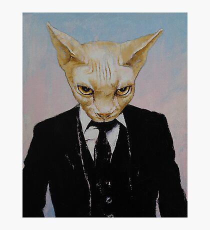 Mister Cat Photographic Print
