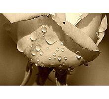 Sweat Photographic Print