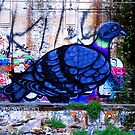 Tramshed Dove by Janie. D