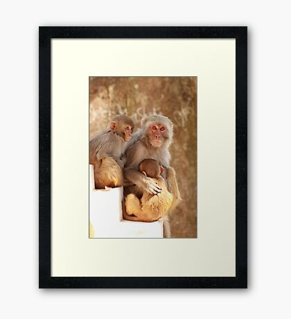Dont worry baby...... Framed Print