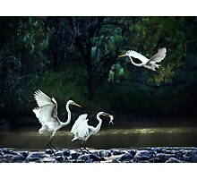 lunching at the weir Photographic Print