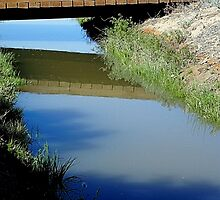 Irrigation Ditch by Loree McComb