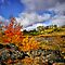 Fall in the Steens by Charles &amp; Patricia   Harkins ~ Picture Oregon