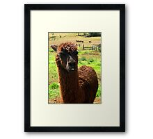 """""""They call me Sweetie"""" Framed Print"""