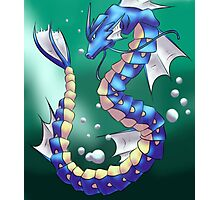 Twisting Fish Dragon Photographic Print
