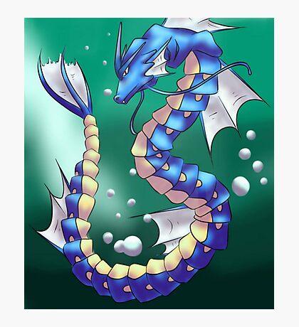 Twisting Fish Dragon Photographic Print