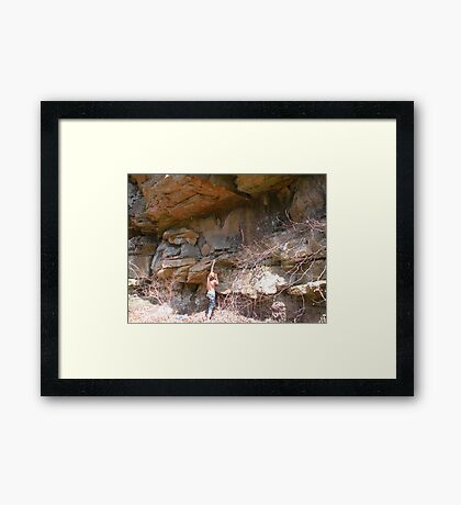 life's obstacles Framed Print
