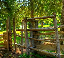 GATE TO THE PAST by Joe Powell
