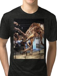 Funky Parasaurolophus Tri-blend T-Shirt