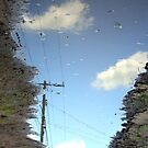 The Sky in a Ruddy Puddle  by DearMsWildOne