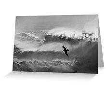 Storm Bird - Hartlepool Heugh Breakwater Greeting Card