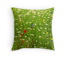 Ness Gardens, Meadow. uk. Throw Pillow