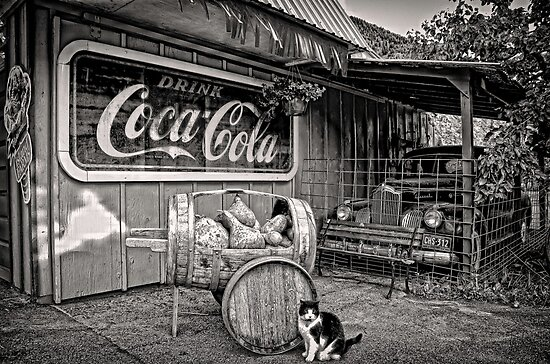 The Cat,Cart,Car and Coca-Cola by peaceofthenorth