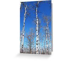 White Lumber Greeting Card