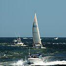 Boats! by Linda Jackson