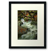 River Diversion Framed Print