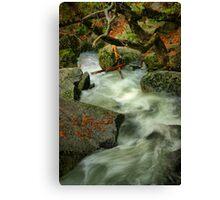 River Diversion Canvas Print