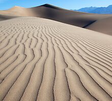 Ripples in the Sand (Death Valley, California) by Brendon Perkins