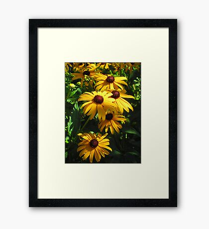 Splendid In Yellow Framed Print