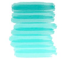 Aquamarine Brush Photographic Print