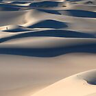 Mesquite Dunes (Death Valley, California) by Brendon Perkins
