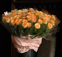 Roses for Students by vbk70