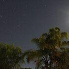 Moon Light by jaskel