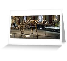 Super Kentrosaurus Greeting Card