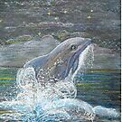 Dolphin Leap for the Moon by sharpie