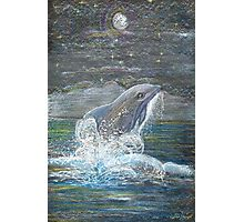 Dolphin Leap for the Moon Photographic Print