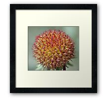 """Fire Ball"" Framed Print"