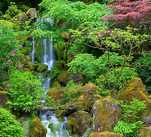 Japenese Gardens, Portland, Oregon by Brendon Perkins