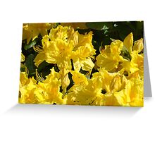 Yellow Rhodies art Colorful Rhododendrons Flowers Greeting Card