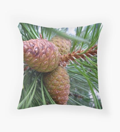 Young Pine Cones Throw Pillow