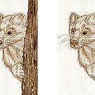 Pine Marten in pencil by sharpie