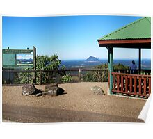 McCarthys Lookout Poster