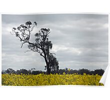 Wonderful trees 3 Poster