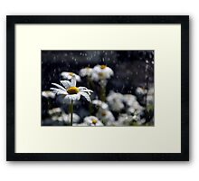 Summer Showers Haiku Framed Print