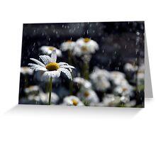 Summer Showers Haiku Greeting Card