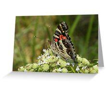 Natural Designs Greeting Card