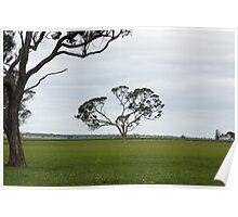Wonderful trees 5 Poster