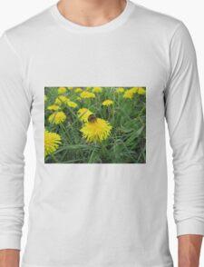 Bumble bee on dandelion (2) Long Sleeve T-Shirt