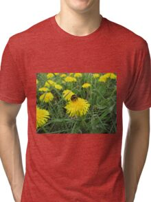 Bumble bee on dandelion (2) Tri-blend T-Shirt