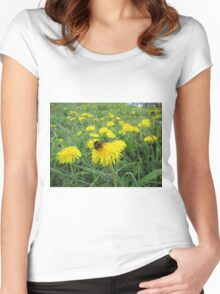 Bumble bee on dandelion Women's Fitted Scoop T-Shirt