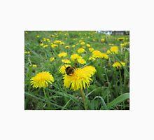 Bumble bee on dandelion Unisex T-Shirt