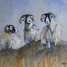 Suspicious Swaledales by Sue Nichol