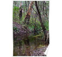 Margaret River Reflections Poster