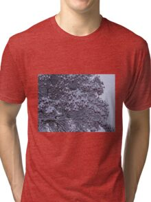 Tree with berries and snow Tri-blend T-Shirt